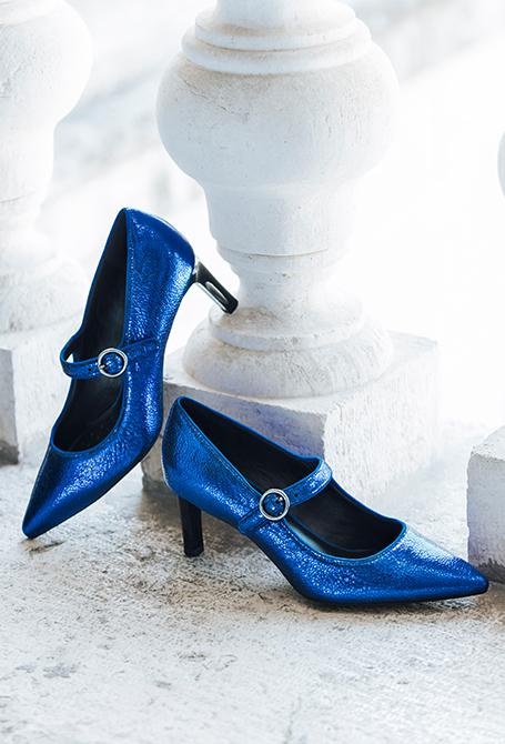 A glamorous blue winter